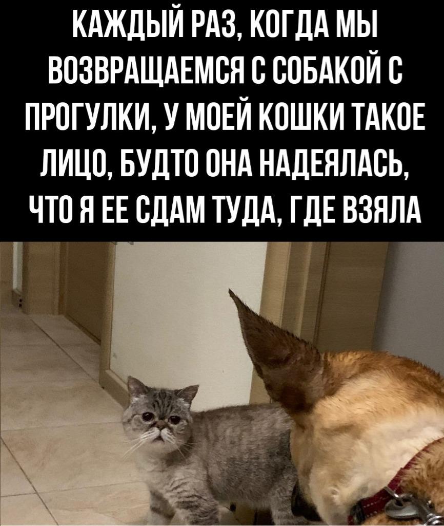 2888a673-67bf-446d-9689-9679336d571f.jpg
