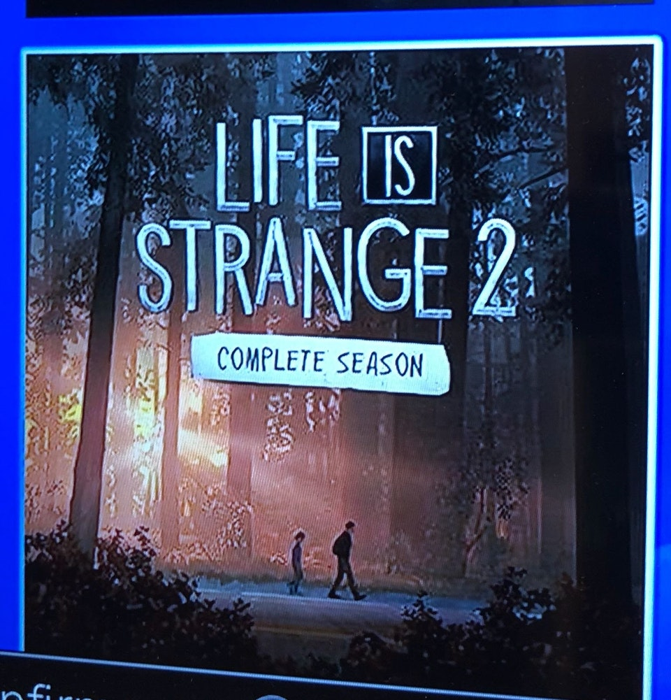 Обложка Life isStrange 2 утекла вСеть засутки доанонса. Главная фанатская теория подтвердилась!
