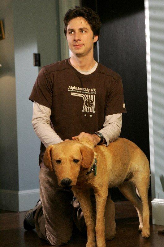 Зак Брафф пытался украсть чучело пса Роуди сосъемок «Клиники»