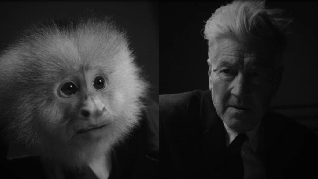 20января 2020 года известному режиссеру Дэвиду Линчу исполнилось 74 года. Его работы можно как искренне любить, так иненавидеть всей душой. Ноэто неотменяет факта, что «Твин Пикс», «Малхолланд Драйв», «Внутренняя империя», «Голова-ластик» ипрочие фильмы навсегда вошли висторию кинематографа. Вчесть праздника Netflix выложил усебя короткометражку Линча «Что сделал Джек?» (What Did Jack Do?). Иона идеально соответствует общему вектору творчества режиссера.