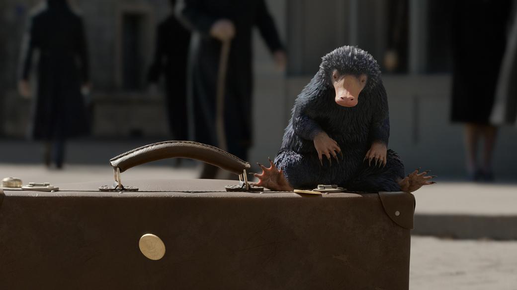 Впреддверии выхода фильма «Фантастические твари: Преступления Грин-де-Вальда» мы решили вспомнить самых необычных магических животных извселенной Гарри Поттера ипервого фильма «Фантастические твари игде они обитают». Некоторые животные удивительны настолько, что забыть их в любом случае трудно.