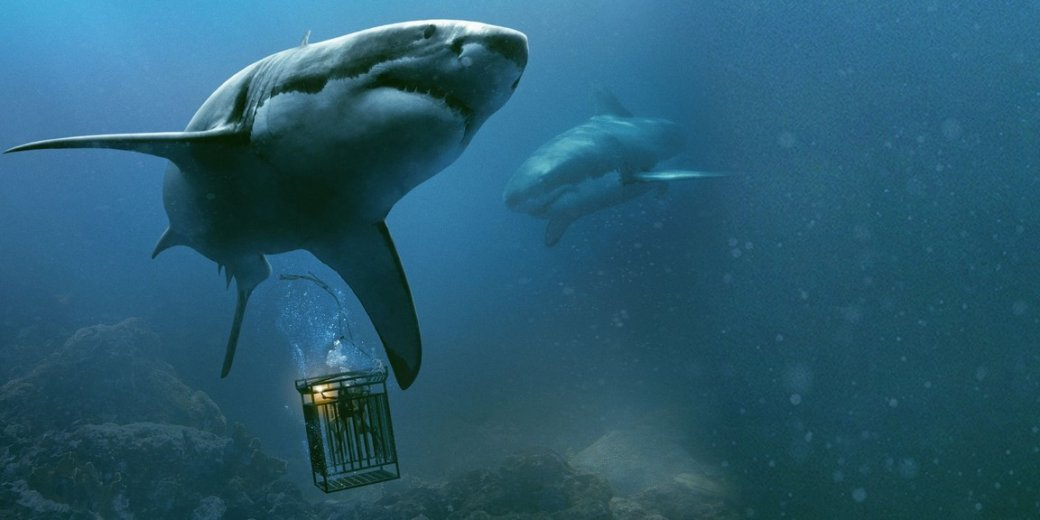 «Мег» сДжейсоном Стэйтэмом— всего лишь последний вдлинной череде фильмов онападении гигантских акул начеловека. Само собой, все началось в1975 году суспеха «Челюстей»— имывам про этот шедевр расскажем. Новпоследствии фильмы про акул многократно преображались— отитальянских клонов Jaws дозаведомого трэша отканала Syfy, сэкскурсами вдетские мультфильмы идрянные боевики 90-х, снятые Ренни Харлином. Денис Варков иАлександр Башкиров вспоминают все фильмы обакулах, достойные вашего внимания.