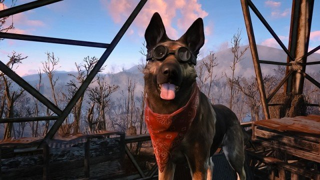 Гифка дня: что нашел Догмит? (Fallout 4)