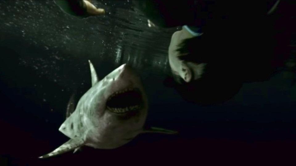 Слепая ярость белой акулы. Что нетак с«Синей бездной2»